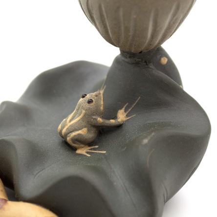 Жаба и семена лотоса